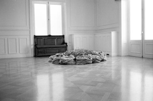 Jannis Kounellis installation 1